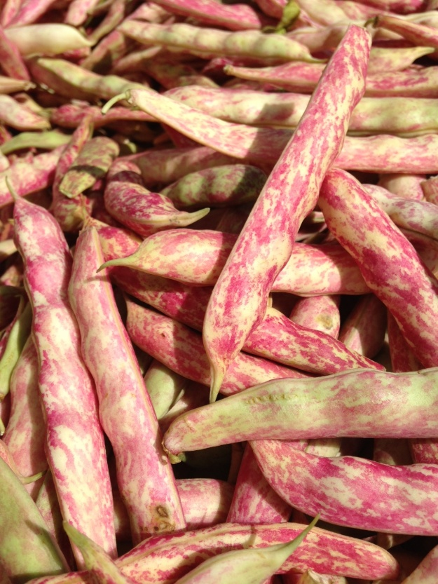 Cranberry Beans from the Orange County Great Park Farmers Market
