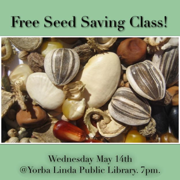seed saving flyer